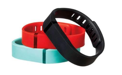 Fitbit Flex: $99