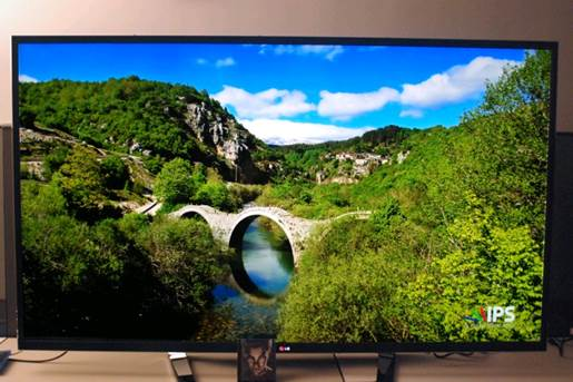 The IPS panel produces crisp pictures with very vivid and sharp colors.