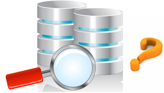 Here's How You Can Choose The Right Database For Your Business!