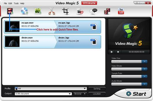 QuickTime movie file: One channel holds your audio track, and the other the contents of the Skype track