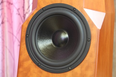 Description: 22cm-diameter speaker gives thick bass