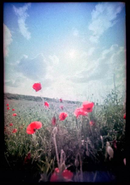 Lomo Film Scanner Nokia Pureview 925 Portrait