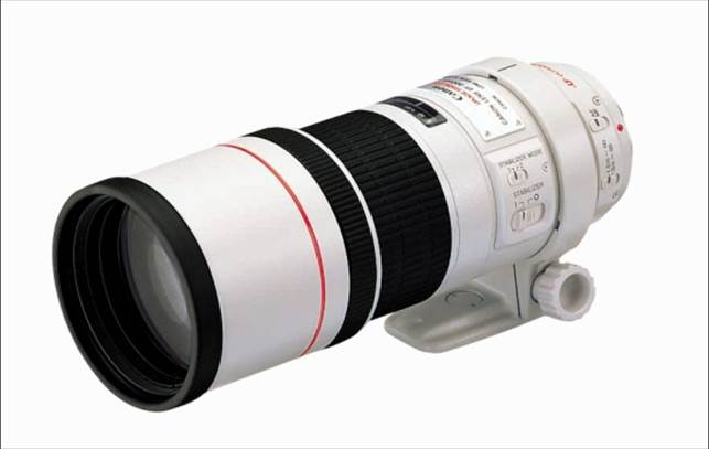 Description: Canon EF 300mm f/4L IS USM